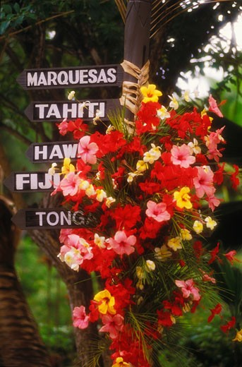 Stock Photo: 1663R-10367 Close-up of a bunch of flowers and information boards, Hawaii, USA