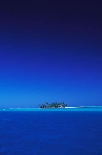 Trees on an island in the sea, Hawaii, USA : Stock Photo