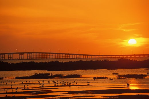 Panoramic view of a bridge at sunset, Texas, USA : Stock Photo