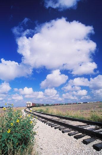 Train on a railroad track, Texas, USA : Stock Photo