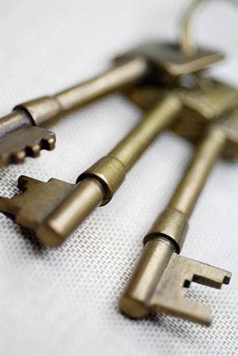 Stock Photo: 1663R-1308 Close-up of three keys on a key ring