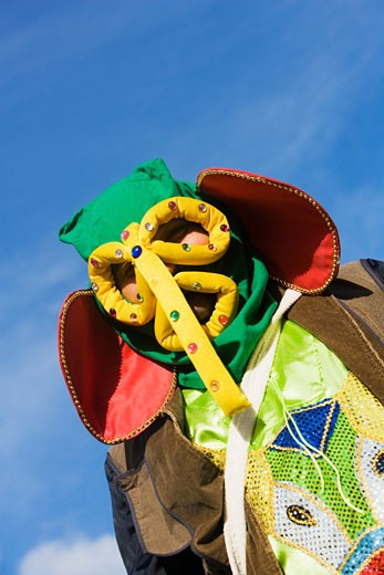 Stock Photo: 1663R-15161 Low angle view of a man wearing a costume