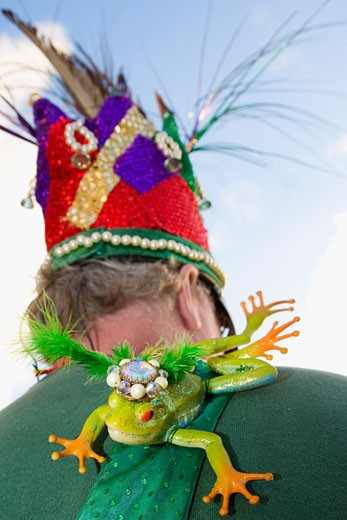 Stock Photo: 1663R-15208 Close-up of a toy frog on a man's shoulder