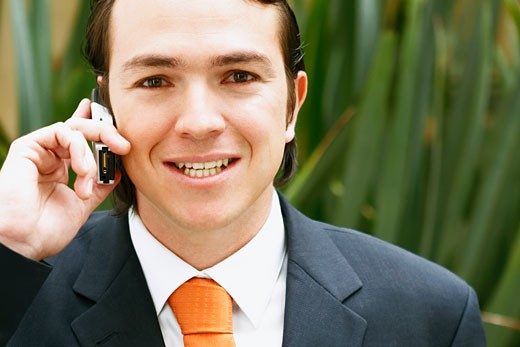 Portrait of a businessman talking on a mobile phone and smiling : Stock Photo