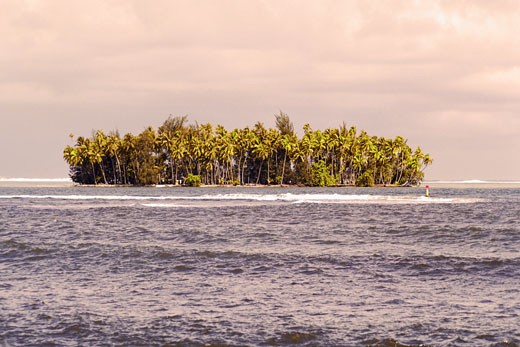 Trees on an island, Tahiti, Society Islands, French Polynesia : Stock Photo