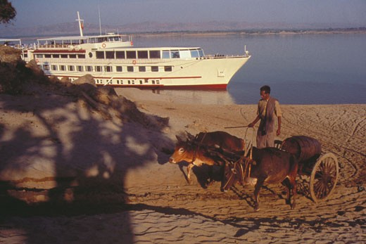 Man riding on an ox cart with a cruise ship in behind, Bagan, Myanmar : Stock Photo