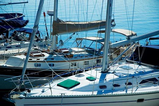 Yachts docked at a harbor, Boston, Massachusetts, USA : Stock Photo