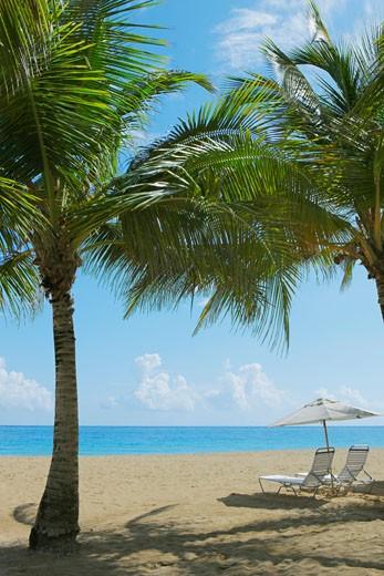 Lounge chairs under patio umbrellas on the beach, Ocean Park, El Condado, San Juan, Puerto Rico : Stock Photo