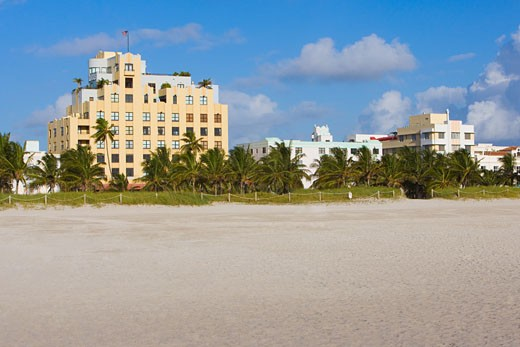 Palm trees in front of buildings, South Beach, Miami Beach, Florida, USA : Stock Photo