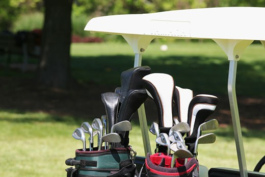 Close-up of golf clubs in golf bags : Stock Photo