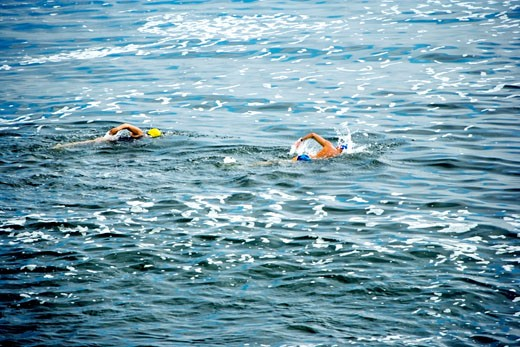 Two people swimming at the La Jolla Reefs, San Diego Bay, California, USA : Stock Photo