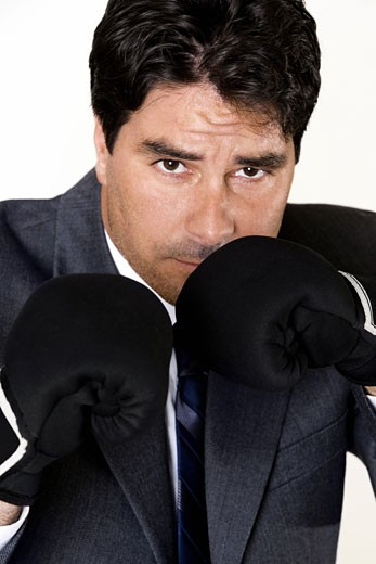 Stock Photo: 1663R-39659 Portrait of a businessman wearing boxing gloves
