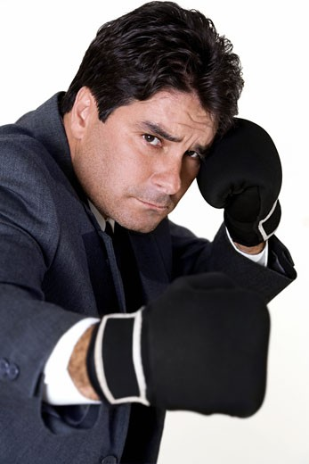 Stock Photo: 1663R-39660 Portrait of a businessman wearing boxing gloves