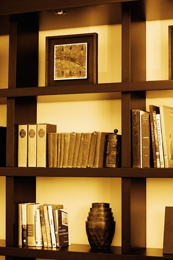 Stock Photo: 1663R-50094 Close-up of books in shelves