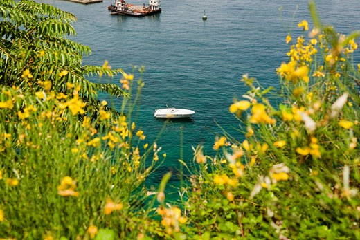 High angle view of a boat, Sorrentine Peninsula, Naples, Naples Province, Campania, Italy : Stock Photo