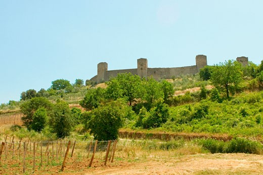 Stock Photo: 1663R-53754 Trees on a hill in front of a fort, Monteriggioni, Siena Province, Tuscany, Italy