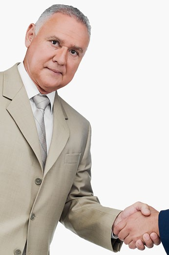 Stock Photo: 1663R-59261 Portrait of a businessman shaking hands with another businessman