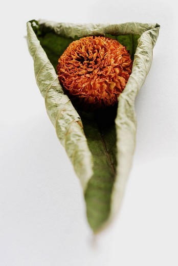 Stock Photo: 1663R-64585 Close_up of a dried flower on a dried leaf