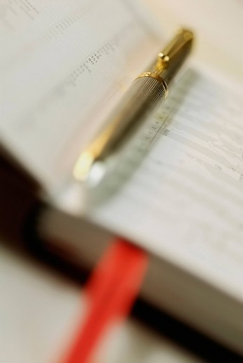 Stock Photo: 1663R-65328 Close_up of a metal pen on a diary