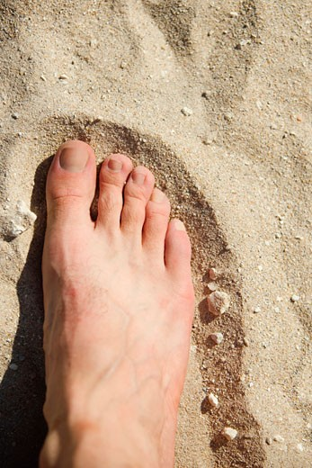 Close-up of a human foot on the sand : Stock Photo