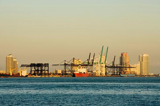 Stock Photo: 1663R-8595 Cruise ship at a harbor, Miami, Florida, USA