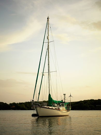 Sailboat in the sea : Stock Photo