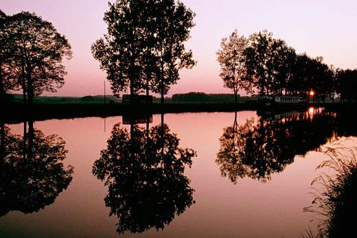 Silhouetted trees being reflected in the Bungundy Canal, France : Stock Photo