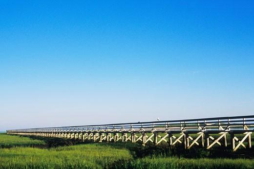 Stock Photo: 1663R-9971 Bridge on a landscape, Cape Cod, Massachusetts, USA