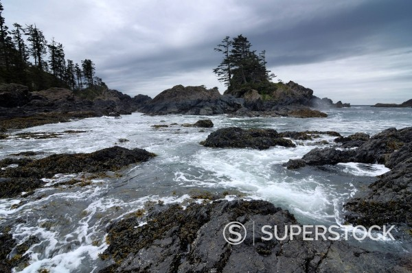Stock Photo: 1669-33024 rocks on coast at pacific rim national park