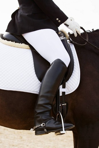 Stock Photo: 1669R-15845 detail of female dressage rider on horse