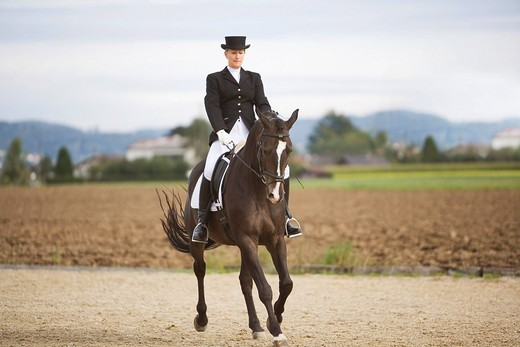 Stock Photo: 1669R-16052 female dressage rider exercising