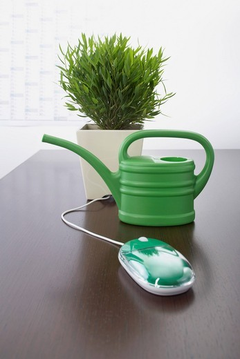 computer mouse watering can and potted plant on table : Stock Photo