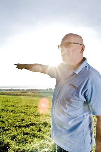 portrait of bald man on meadow pointing against sky : Stock Photo