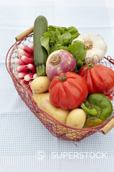 Stock Photo: 1669R-32661 basket full of different vegetables