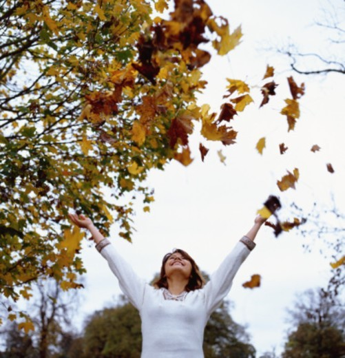 Young woman throwing leaves in air, smiling : Stock Photo