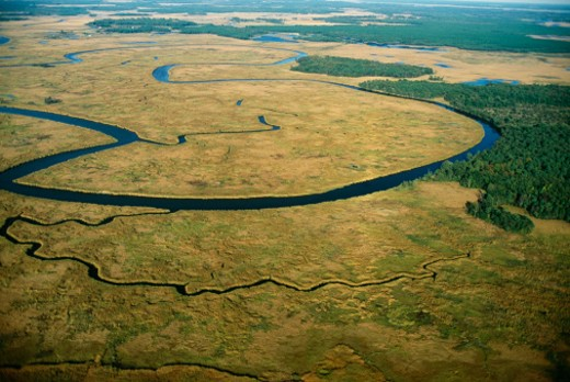 USA, Maryland, Blackwater Refuge, tidal marsh, aerial view : Stock Photo