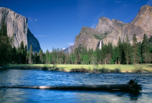 USA, California, Yosemite National Park : Stock Photo