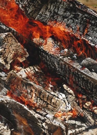 Log fire, full frame : Stock Photo