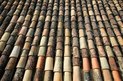 Tile roof, full frame : Stock Photo