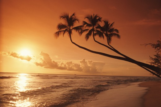 Stock Photo: 1672R-1864 West Indies, Barbados, tropical beach, sunset
