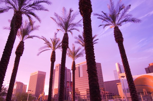 Stock Photo: 1672R-2872 USA, Arizona, Phoenix, downtown skyline
