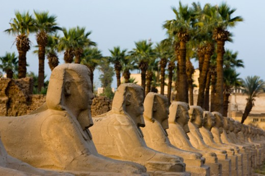 Stock Photo: 1672R-30267 a row of Sphinxes Luxor Temple in the evening light