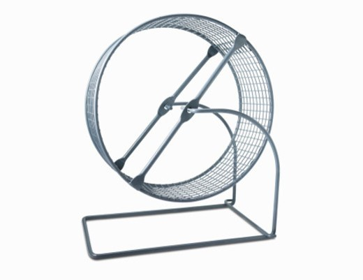 Stock Photo: 1672R-32387 Hamster Wheel