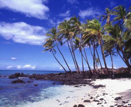 Stock Photo: 1672R-3340 USA, Hawaii, Big Island, beach near Kona