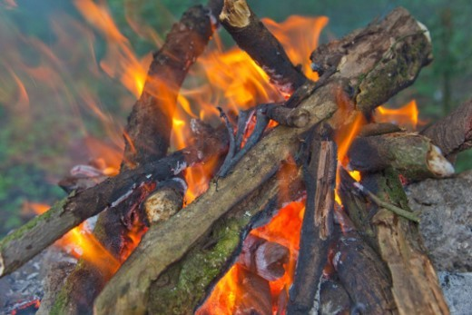 Burning wood and flames at a campfire : Stock Photo