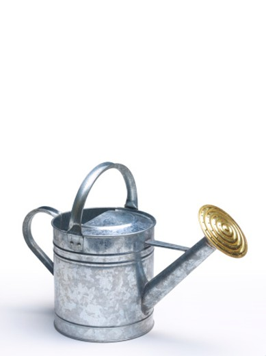 Watering can with copy space : Stock Photo