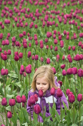 Young girl bent down smelling tulips : Stock Photo