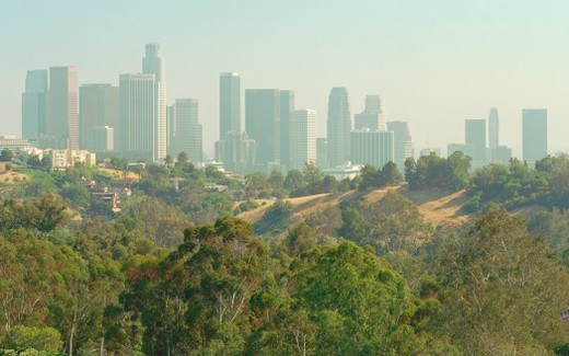 Stock Photo: 1672R-39648 Cityscape of Los Angeles skyline from Elysian Park