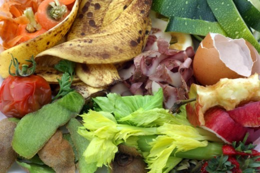 Close-up of organic fruit and vegetables food waste from kitchen for composting. The image includes carrot, potato peelings and apple peelings, apple core, banana skins, egg shell, rotten tomato, parsley, skin of kiwi fruit, celery leaves, marrow skin and strawberry tops. : Stock Photo