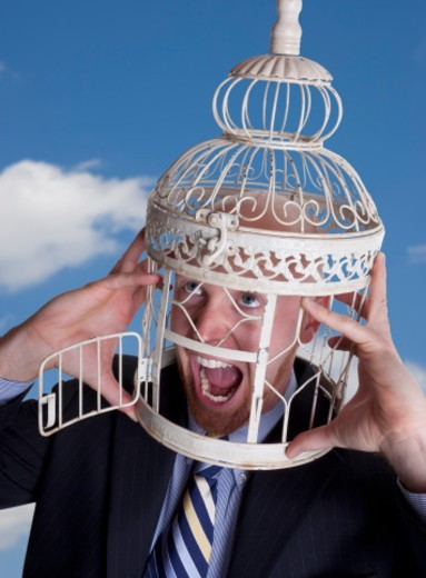 Businessman with head in birdcage : Stock Photo